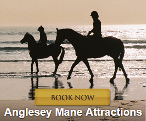 Anglesey Mane Attractions